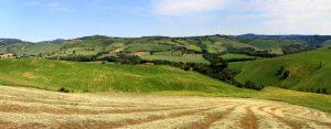 CUUM Montefeltro paesaggio
